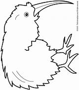 Kiwi Coloring Bird Pages Fruit Clipart Colouring Printable Drawing Animal Birds Printables Getdrawings Getcolorings Animalstown Kaynak Dc Lightupyourbrain sketch template