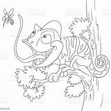 Chameleon Coloring Cartoon Animal Illustration Amphibian Vector Ukraine Wildlife Hunting Animals sketch template