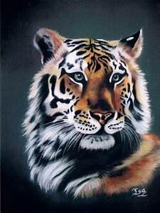 Peindre Au Pastel : tableau pastel sec tigre par l 39 artiste isabellesuchet sur ~ Melissatoandfro.com Idées de Décoration