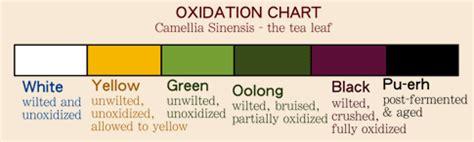 does white tea caffeine does white tea have caffeine tea perspective