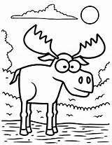 Moose Coloring Pages Face Standing Water Cartoon Eyed Drawing Zion Printable Animal Template Williams Christmas Antler Getdrawings Getcolorings Sketch Realistic sketch template