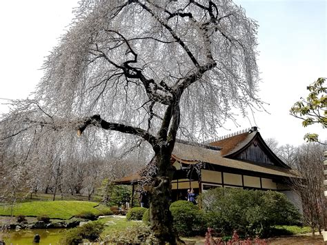 The Shofuso Japanese House and Garden (Photo Gallery)   AL ...