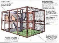 Construire Enclos Pour Chats : image mes chatounets pinterest chats enclos chat et poulaillers ~ Melissatoandfro.com Idées de Décoration