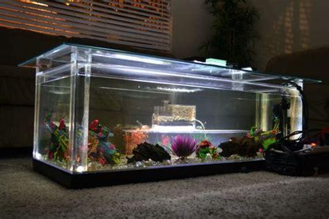 diy aquarium fish tank coffee table designs plans