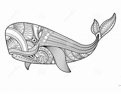 Whale Coloring Mandala Printable Pages Adult Tribal