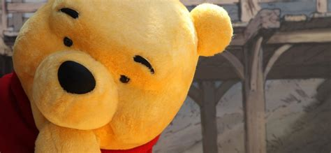 wise winnie  pooh quotes   remarkable power