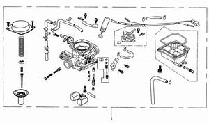 Hammerhead 250cc - Carburetor Assembly