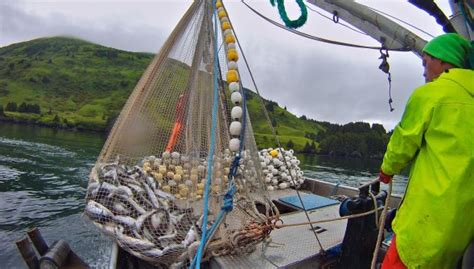 Crab Fishing Boat Jobs by Deckhand Jobs On Crab Boat In Alaska Autos Post