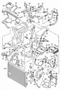 Durite Circuit Refroidissement   R U00e9f U00e9rences Officielles