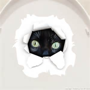 Cat Eyes Wall Decals