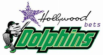 Dolphins Cricket Hollywoodbets Team Wikipedia Bets Hollywood
