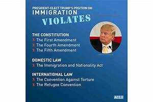 Donald Trump: A One-Man Constitutional Crisis | American ...