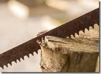 Bandsägeblätter Für Brennholz : brennholz s geband tipps von s geblatt shop ~ Watch28wear.com Haus und Dekorationen
