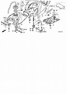 05 Trx450r Wiring Diagram