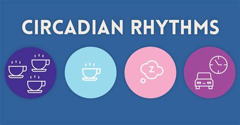 infographic circadian rhythms cortisol paleo leap