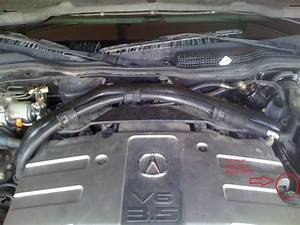 2000 Acura Rl Engine Diagram