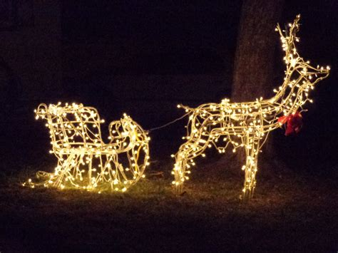 dream lighted christmas reindeer outdoor decorations