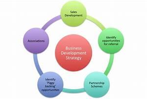 Business development strategy, identify and develop ...