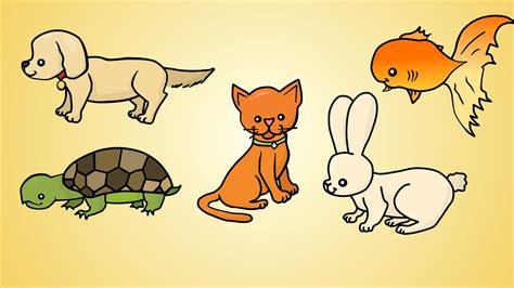 draw    draw pets youtube