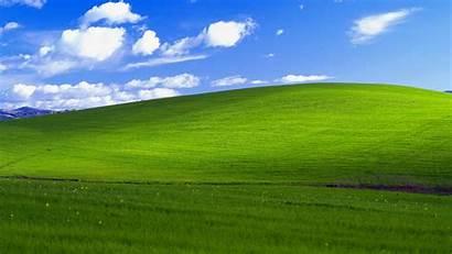 Bliss Grass Wallpapers Background Nature Desktop Landscape