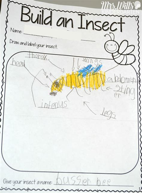 Insect Lesson Plans  Top Primary Resources And Ideas  Pinterest  Kindergarten, Insects And