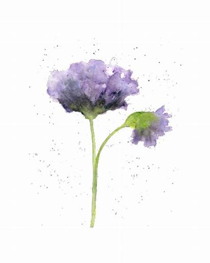 Flower Watercolor Painting Simple Lukisan Bunga Paintings