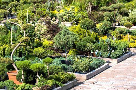 Garten Und Landschaftsbau Zubehör by Garten Und Landschaftsbau Baumschule Obojes