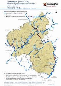 Genehmigungsfreie Bauvorhaben Rheinland Pfalz : lachsverbreitung ~ Whattoseeinmadrid.com Haus und Dekorationen