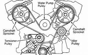 2000 Mustang Gt Belt Diagram