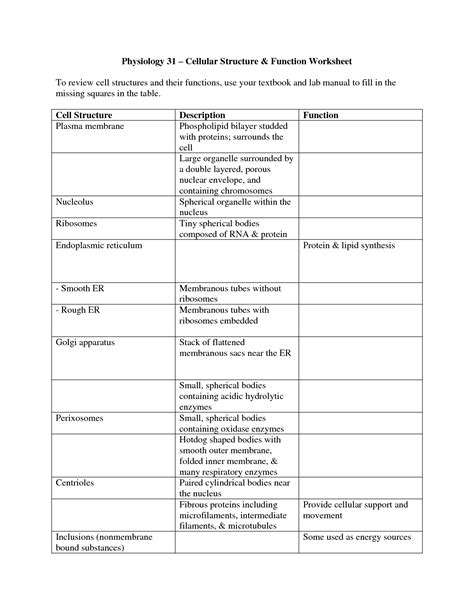 plant cell structure and function worksheet