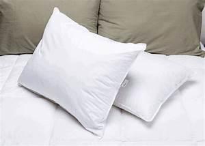 envirosleep r dream surrender cluster fiber pillows With envirosleep pillows