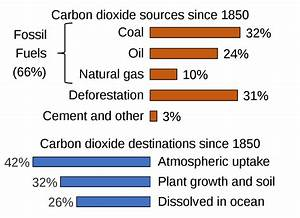 File Carbon Sources And Sinks Svg