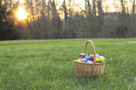 organising an easter egg hunt organization provides easter egg hunt for children with disabilities