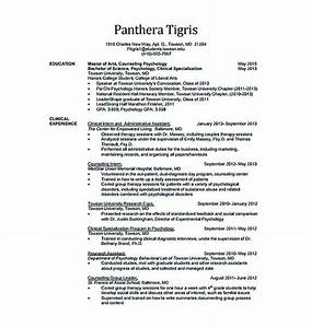 Technical Resume Skills Best Data Scientist Resume Sample To Get A Job