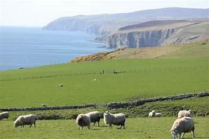 Land In Schottland Kaufen : file schottland nordsee 3 jpg ~ Lizthompson.info Haus und Dekorationen