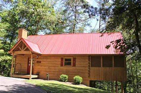 4 bedroom pet friendly cabins in pigeon forge tn pet friendly cabins in pigeon forge 100 4 reasons you