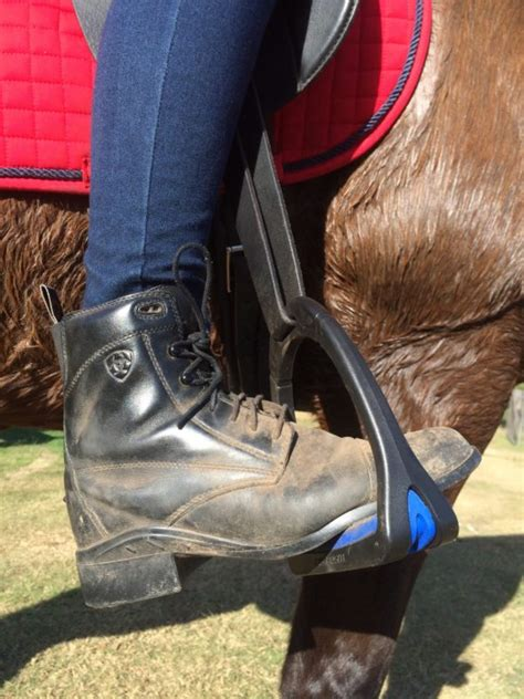 riding horse shoes boots suitable uncategorized ideal