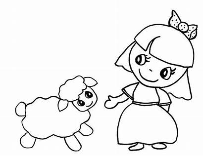 Lamb Mary Had Coloring Cartoon Pages Drawing