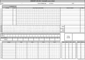 Blood Pressure Excel Template The Cricket Sheet 2 Can Help You A Professional And Document