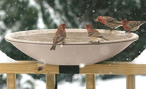 deck mounted solar heated bird bath home green home