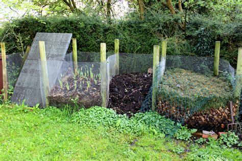 kompost selber machen efeu auf dem kompost entsorgen 187 warum ist das keine gute idee
