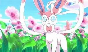 pokemon gifs movie Sylveon pokemon-xy-news •