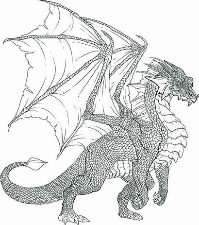 Dragon Coloring Realistic Pages Dragoart Worksheets Via