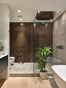 Plante Verte Salle De Bain : id e d coration salle de bain idee salle de bain baignoire blanche ovale galets d coratifs ~ Melissatoandfro.com Idées de Décoration