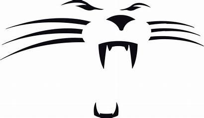 Panthers Carolina Panther Logos Face Chris Concept