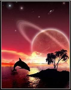 Zeichnen Am Pc Lernen : delfine bilder delfine gb pics gbpicsonline ~ Markanthonyermac.com Haus und Dekorationen