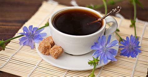 Kafe çikore: vetite, përgatitja, kaloritë ~ MJEKSIA.EU