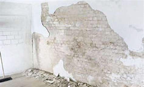 Nasse Wände Behandeln by Teilweise Verputzen Renovieren Kellerabdichtung