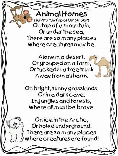 Animal Homes Poem Move Grade Second Animals