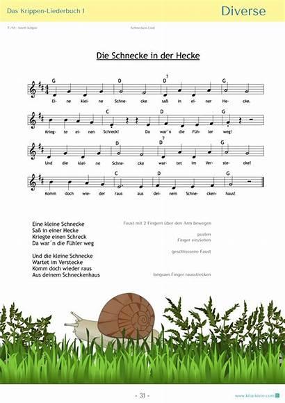 Kinderlieder Kinder Schnecke Kindergarten Bewegungslieder Pdf Lieder